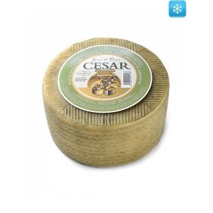 Halbgereifter Schafskäse César 3,2 kg